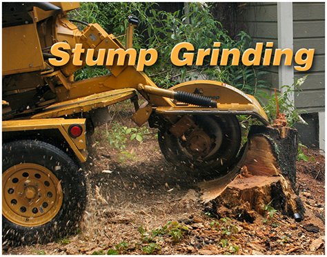Stump Grinding text