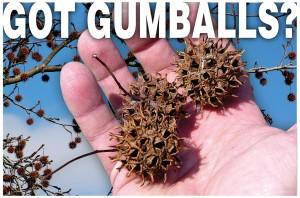Got Gumballs?