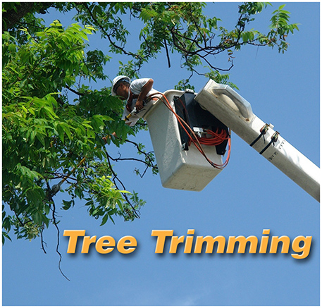 Tree Trimming text