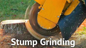 rays website service blocks - stump grinding