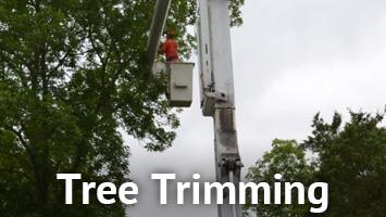 rays website service blocks- tree trimming